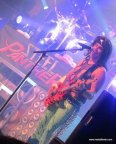 Steel_Panther_41