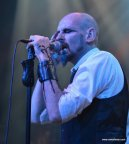 07_my dying bride 14